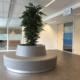 Coated foam, Public space, publiekeruimte, inrichting organisch element, boombank, gecoat schuim, gecoatschuim, furniture, meubels